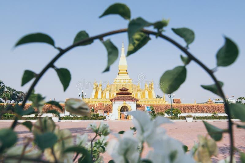 Χρυσό stupa εκείνου του Luang που πλαισιώνεται με τον κλάδο θάμνων σε Vientiane, Λάος στοκ εικόνες