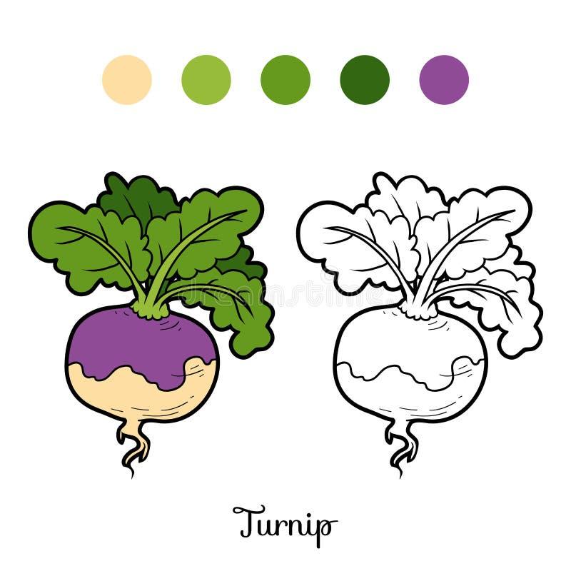 Χρωματίζοντας βιβλίο, λαχανικά, κράμβη διανυσματική απεικόνιση