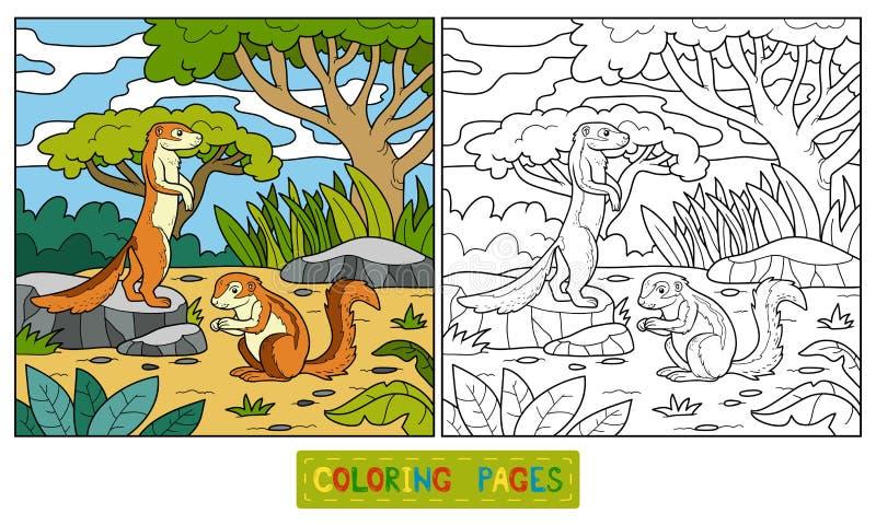 Χρωματίζοντας βιβλίο (επίγειος σκίουρος, xerus) απεικόνιση αποθεμάτων