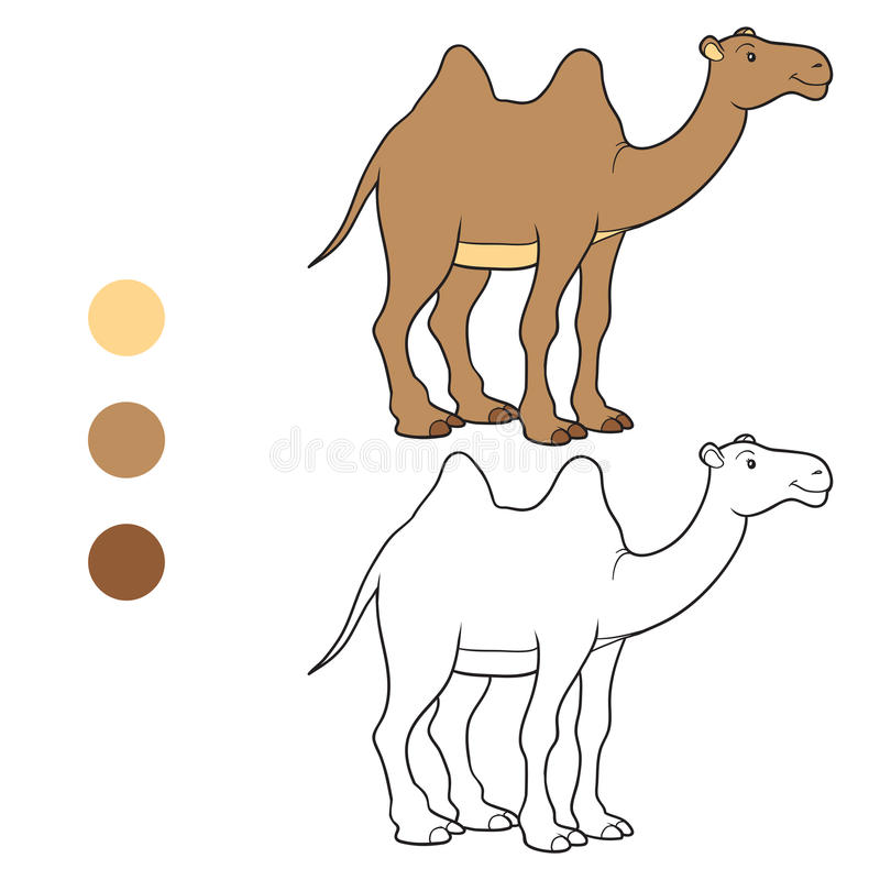 Χρωματίζοντας βιβλίο (καμήλα) ελεύθερη απεικόνιση δικαιώματος