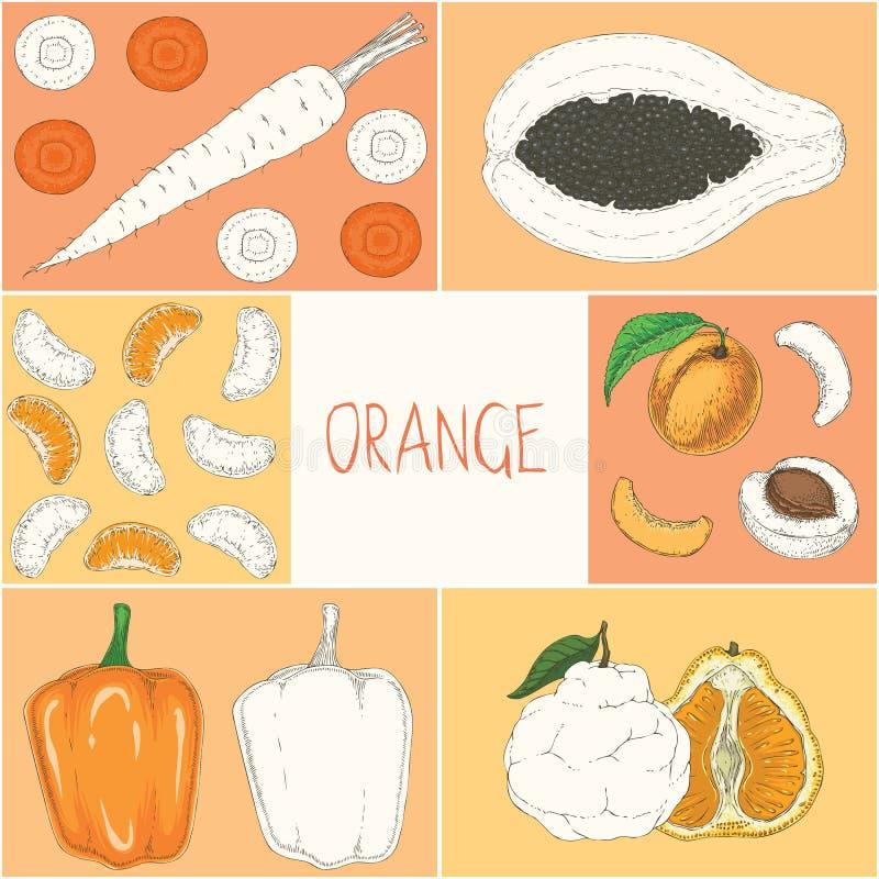 Χρωματίζοντας σελίδα βιβλίων Πορτοκάλι λαχανικά καρπών διανυσματική απεικόνιση
