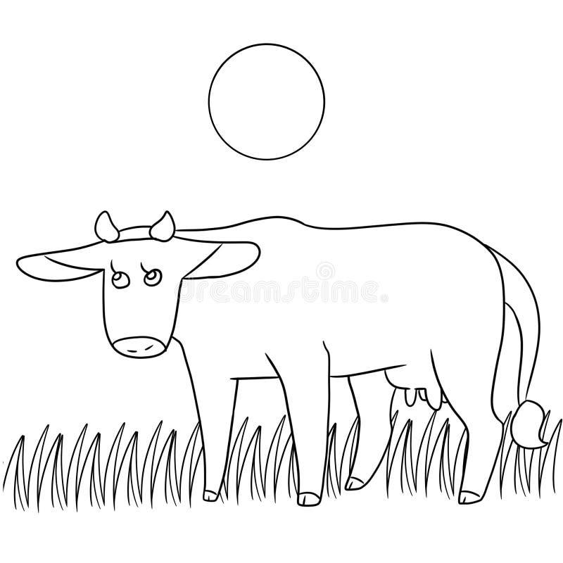Χρωματίζοντας σελίδα αγελάδων διανυσματική απεικόνιση