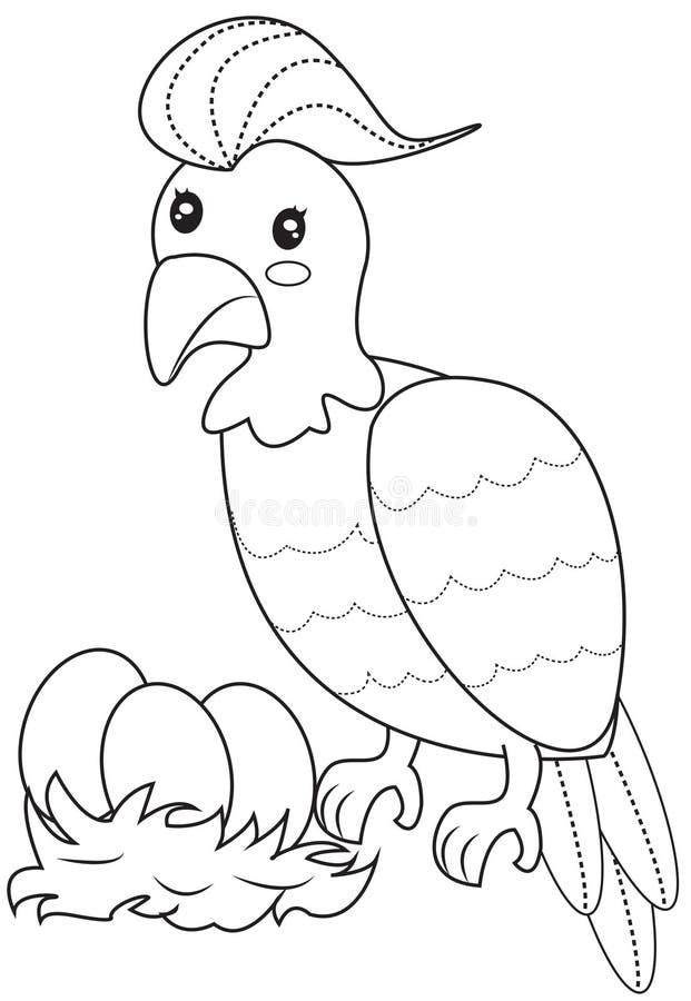 Χρωματίζοντας σελίδα πουλιών ελεύθερη απεικόνιση δικαιώματος
