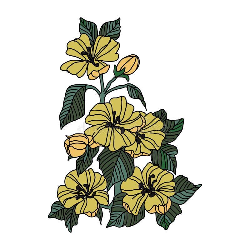 Χρωματισμένα λουλούδια που επισύρουν την προσοχή με την γραμμή-τέχνη στα άσπρα υπόβαθρα απεικόνιση αποθεμάτων