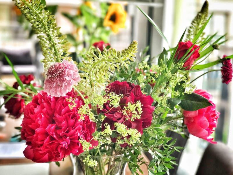 Χρωματισμένα λουλούδια σε μια άνθιση βάζων στοκ φωτογραφία με δικαίωμα ελεύθερης χρήσης