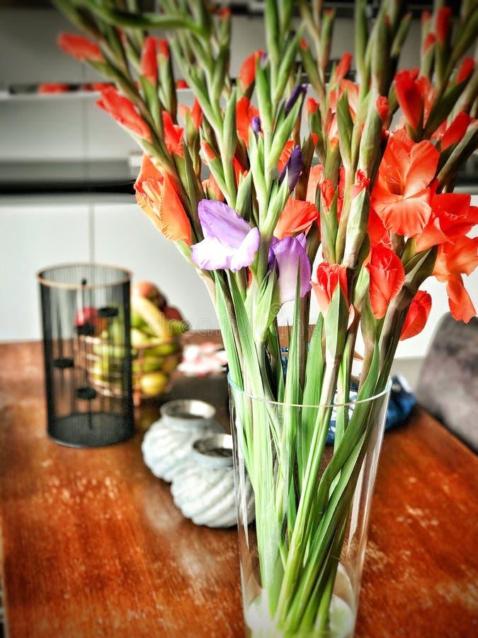 Χρωματισμένα λουλούδια σε μια άνθιση βάζων στοκ φωτογραφίες