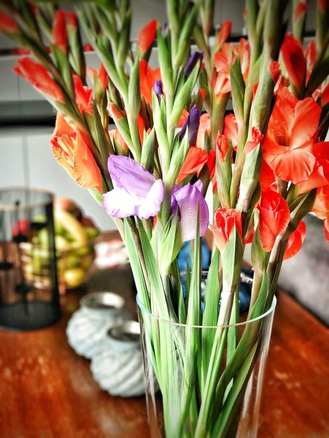Χρωματισμένα λουλούδια σε μια άνθιση βάζων στοκ φωτογραφία