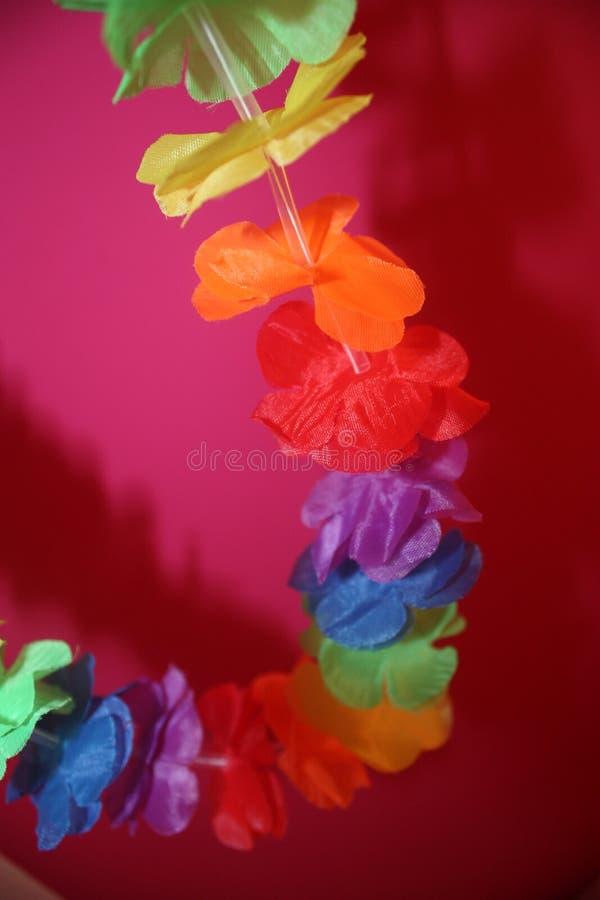 χρωματισμένα λουλούδια &C στοκ φωτογραφία