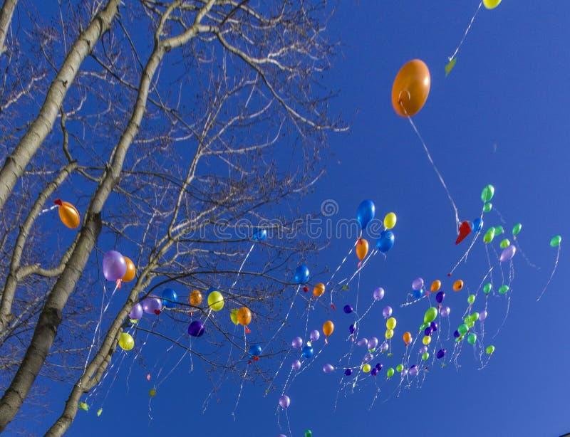 Χρωματισμένα μπαλόνια αέρα στο μπλε ουρανό στοκ εικόνες με δικαίωμα ελεύθερης χρήσης