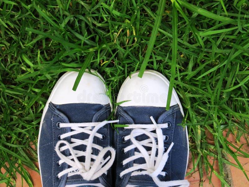 χρωματισμένα πάνινα παπούτσ&io στοκ φωτογραφίες