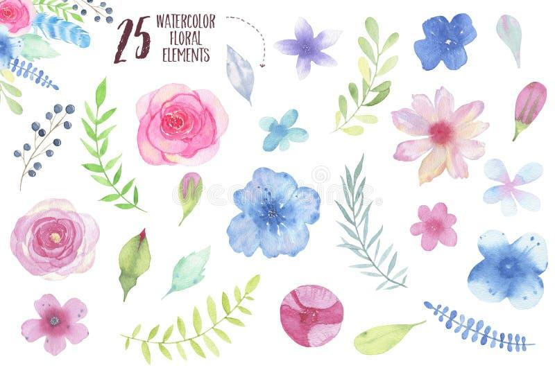 Χρωματισμένα χέρι λουλούδι και φύλλα Watercolor καθορισμένα απομονωμένα στο άσπρο υπόβαθρο διανυσματική απεικόνιση