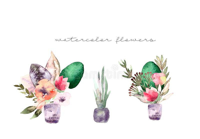 Χρωματισμένη σύνθεση watercolor των λουλουδιών στα χρώματα κρητιδογραφιών: θερινά λουλούδια, χορτάρια, κλάδοι, ευκάλυπτος στο βάζ ελεύθερη απεικόνιση δικαιώματος