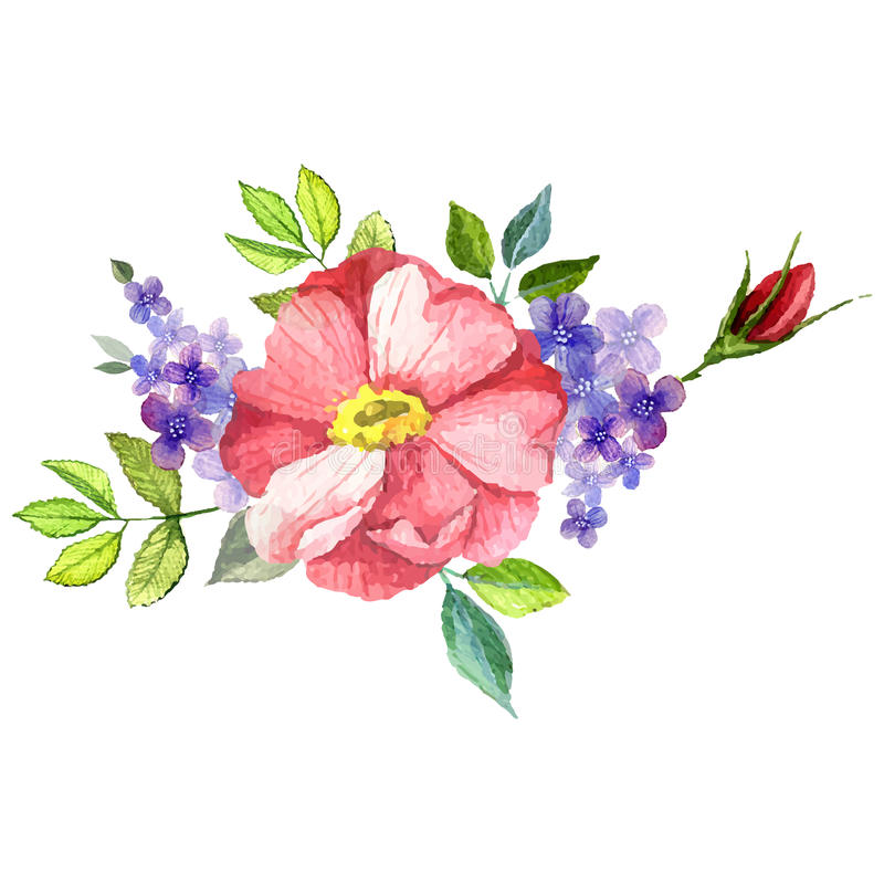 Χρωματισμένη χέρι διανυσματική floral ανθοδέσμη watercolor απεικόνιση αποθεμάτων