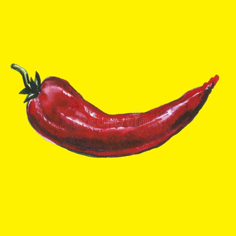 Χρωματισμένη Watercolor συλλογή των λαχανικών φθινοπώρου Συρμένα χέρι φρέσκα στοιχεία σχεδίου τροφίμων που απομονώνονται στο άσπρ στοκ φωτογραφία