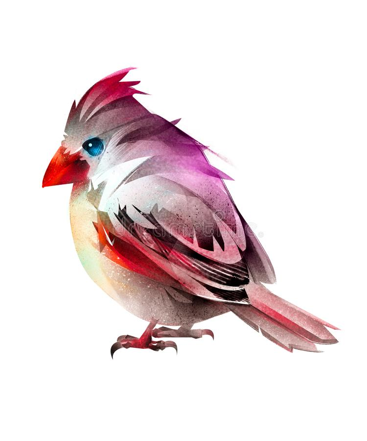 Χρωματισμένος καθμένος καρδινάλιος πουλιών Απομονωμένο τυποποιημένο σκίτσο ελεύθερη απεικόνιση δικαιώματος
