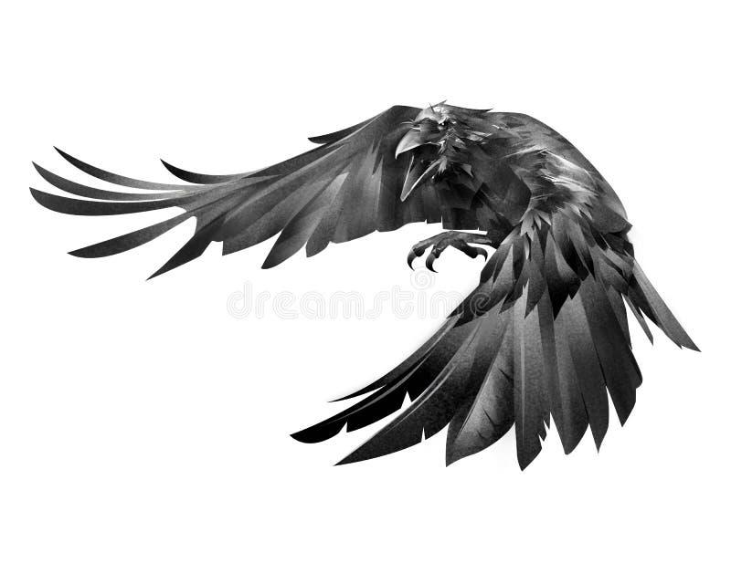 Χρωματισμένος κόρακας που επιτίθεται σε ένα πουλί σε ένα άσπρο υπόβαθρο ελεύθερη απεικόνιση δικαιώματος