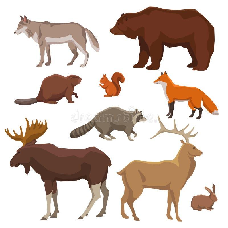 Χρωματισμένο άγριο ζώο σύνολο εικονιδίων απεικόνιση αποθεμάτων