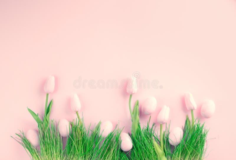 χρωματισμένο ανασκόπηση Πάσχας αυγών eps8 διάνυσμα τουλιπών μορφής κόκκινο Φωτεινά ρόδινα αυγά και ζωηρή χλόη τουλιπών άνοιξη ανθ στοκ εικόνες