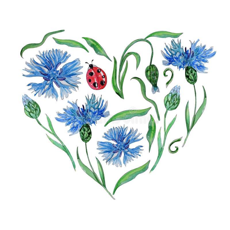 Χρωματισμένο χέρι πρότυπο watercolor των λουλουδιών άνοιξη απεικόνιση αποθεμάτων
