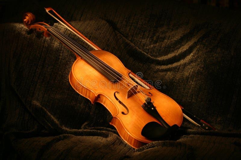 χρωματισμένο viola στοκ εικόνες