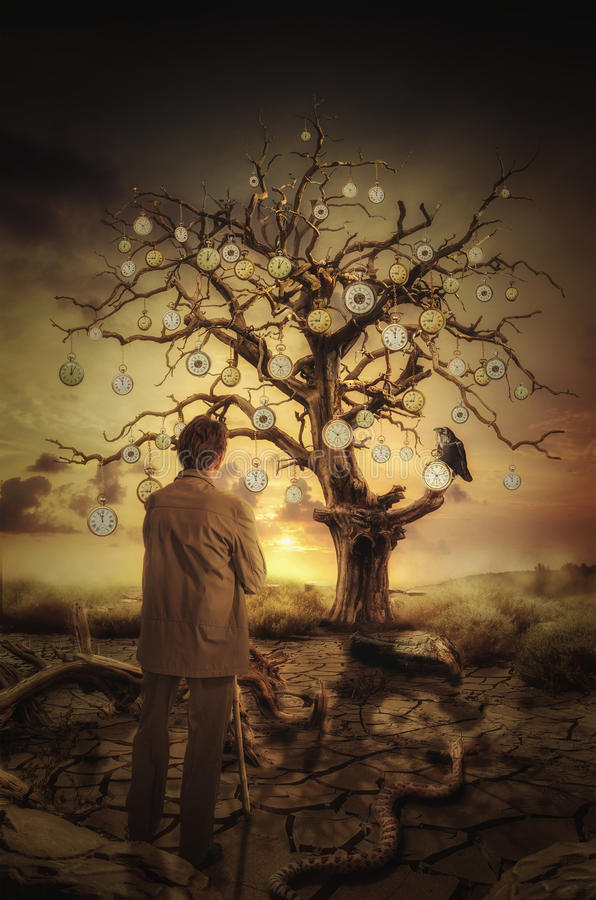 Χρόνος δέντρων ελεύθερη απεικόνιση δικαιώματος