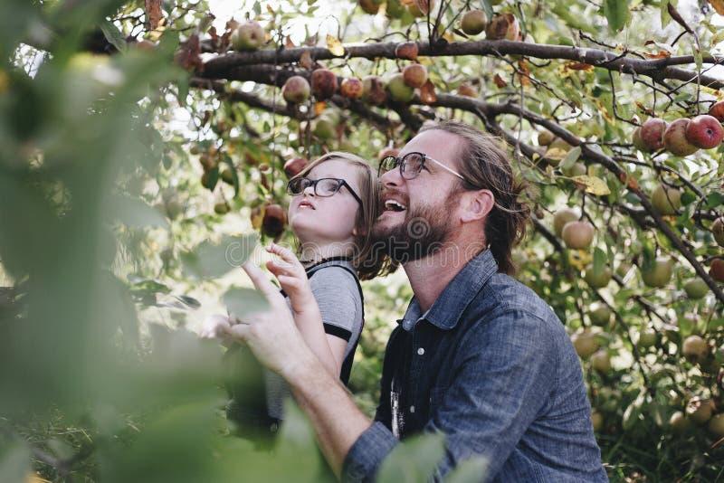 Χρόνος οικογενειακών εξόδων στο αγρόκτημα στοκ φωτογραφίες