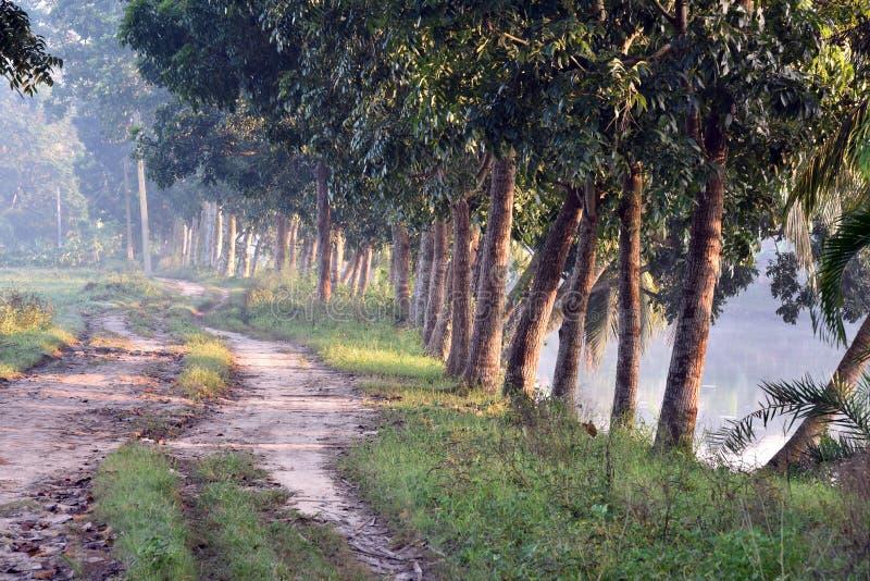 Χρόνος πρωινού στο χωριό στοκ εικόνες με δικαίωμα ελεύθερης χρήσης