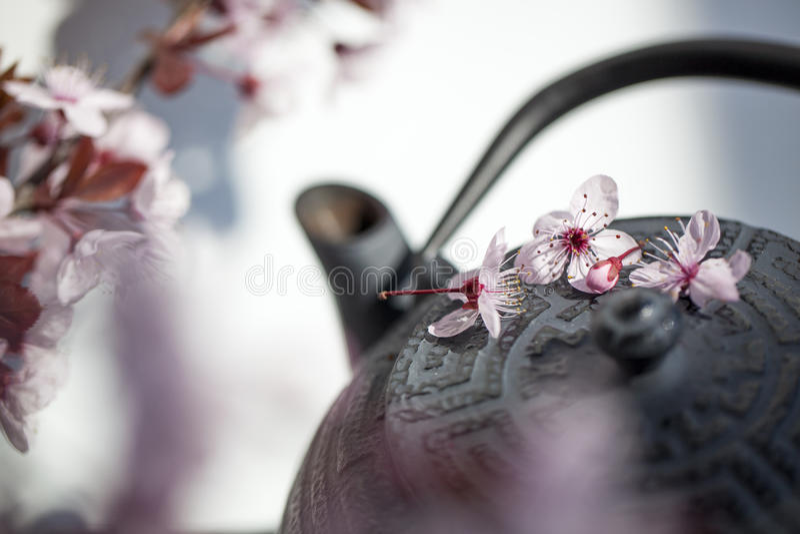 Χρόνος τσαγιού της Zen για το fengshui και το ayurveda στοκ εικόνα