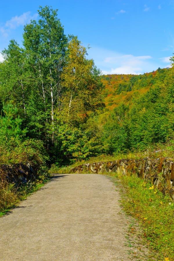 Χρώματα ποδιών και φυλλώματος, στο Εθνικό Πάρκο Mont Tremblant στοκ εικόνα
