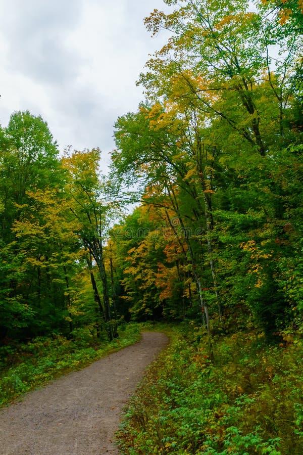 Χρώματα ποδιών και φυλλώματος, στο Εθνικό Πάρκο Mont Tremblant στοκ εικόνες με δικαίωμα ελεύθερης χρήσης