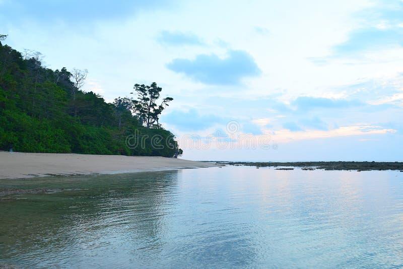 Χρώματα πριν από την ανατολή στο μπλε ουρανό πρωινού με τις σκιαγραφίες των δέντρων στη γαλήνια ακτή του σώματος νερού - φυσικό τ στοκ εικόνες