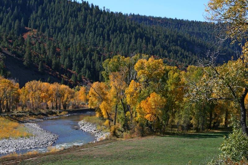 Χρώματα πτώσης στα βουνά στοκ εικόνες με δικαίωμα ελεύθερης χρήσης