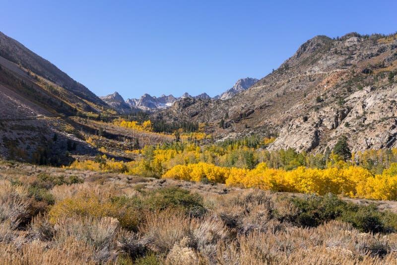 Χρώματα πτώσης στην ανατολική οροσειρά, κοντά στον επίσκοπο Καλιφόρνια στοκ φωτογραφία με δικαίωμα ελεύθερης χρήσης