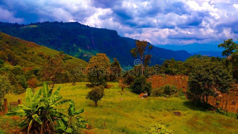 Χρώματα της Κολομβίας στοκ εικόνες με δικαίωμα ελεύθερης χρήσης