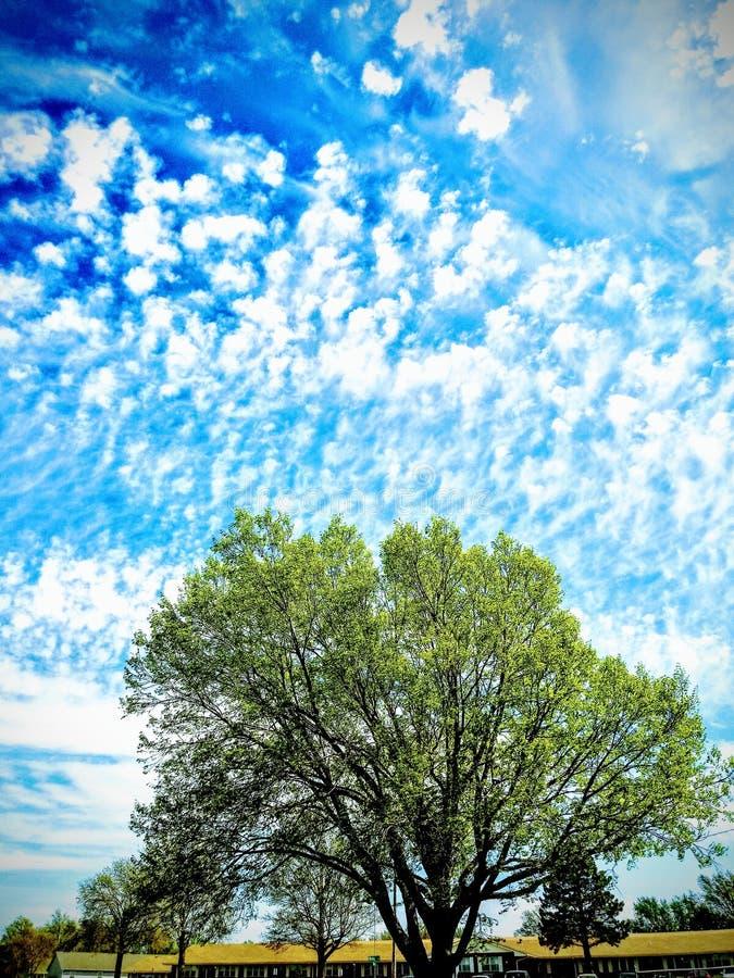 Χρώματα του Κάνσας στοκ φωτογραφίες με δικαίωμα ελεύθερης χρήσης