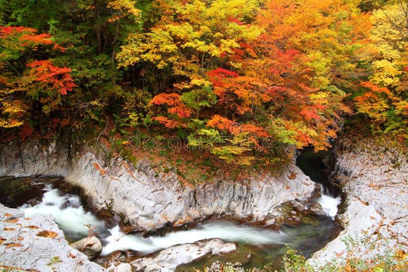 Χρώματα φθινοπώρου της κοιλάδας στοκ φωτογραφία με δικαίωμα ελεύθερης χρήσης