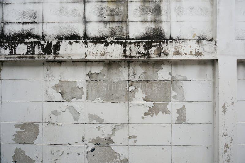 Χρώμα αποφλοίωσης τοίχων τσιμέντου στοκ φωτογραφία με δικαίωμα ελεύθερης χρήσης