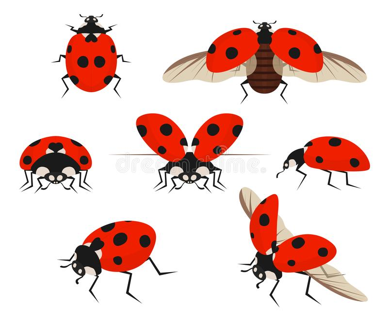Χρώμα κινούμενων σχεδίων κυρία Bug Icon Set r ελεύθερη απεικόνιση δικαιώματος