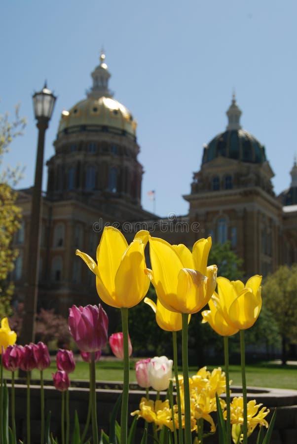 χτίζοντας κράτος του Iowa capitol στοκ εικόνα