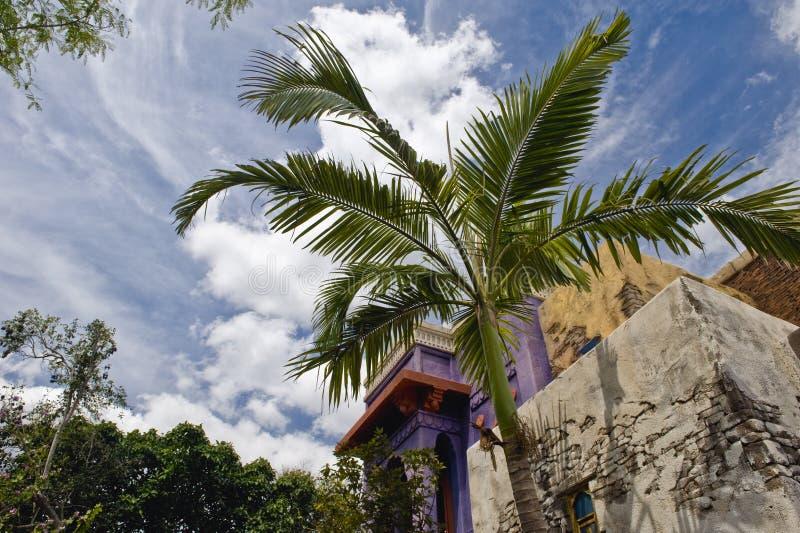 χτίζοντας τη ζούγκλα παλ&al στοκ φωτογραφία με δικαίωμα ελεύθερης χρήσης