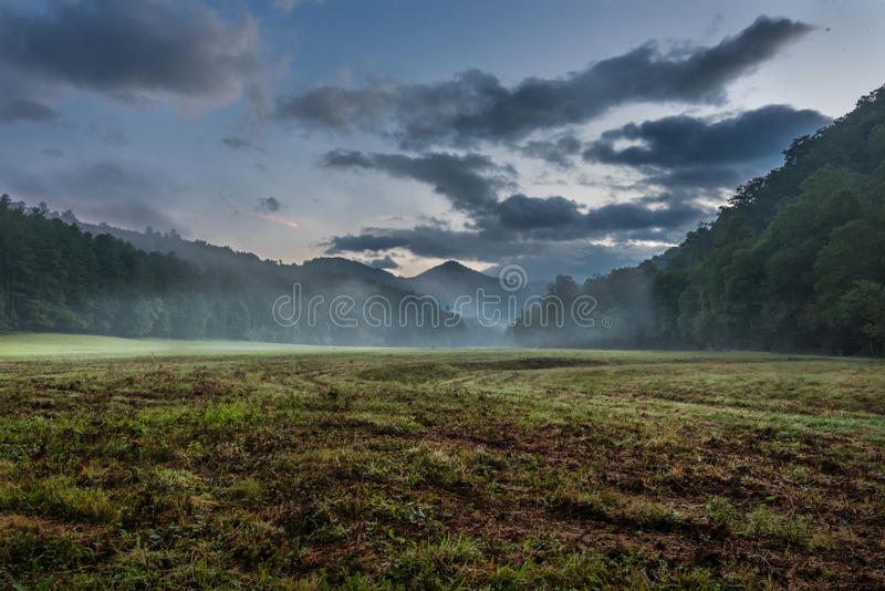 Χτυπήματα ομίχλης μέσω της χλοώδους κοιλάδας το καλοκαίρι στοκ εικόνες
