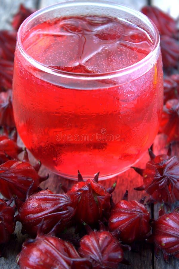 Χυμός από Rosella ή roselle τα φρούτα στοκ εικόνα