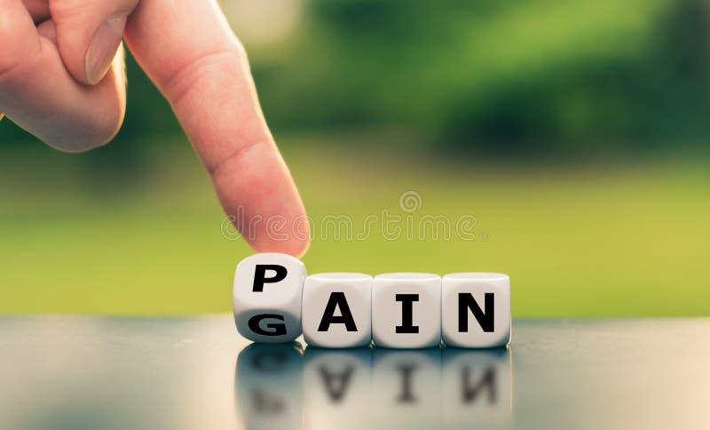 Χωρίς πόνο χωρίς κέρδος στοκ εικόνες