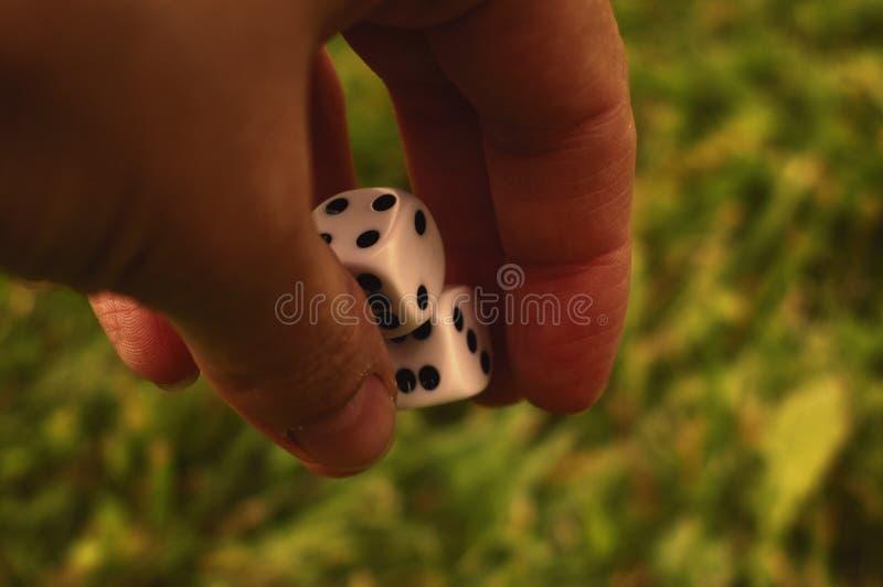 Χωρίστε σε τετράγωνα στο θηλυκό χέρι στα πλαίσια του χορτοτάπητα στοκ φωτογραφία
