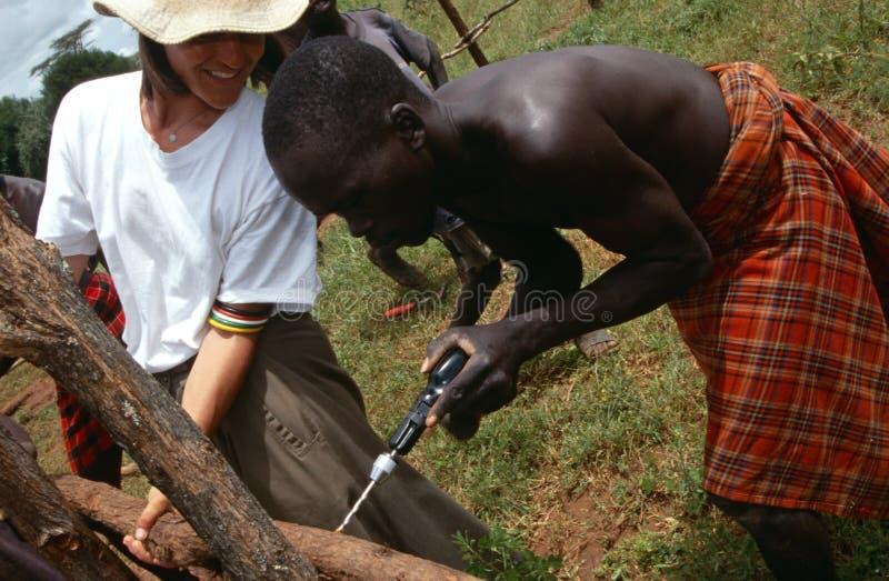Χωρικοί Karamojong, Ουγκάντα στοκ φωτογραφίες με δικαίωμα ελεύθερης χρήσης