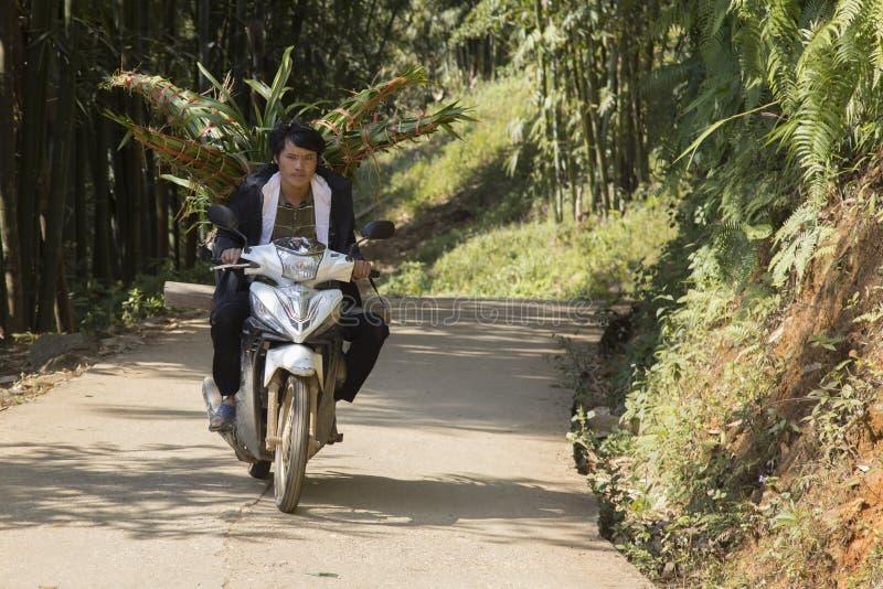 Χωρικός που μεταφέρει τη χλόη ελεφάντων στοκ εικόνα με δικαίωμα ελεύθερης χρήσης