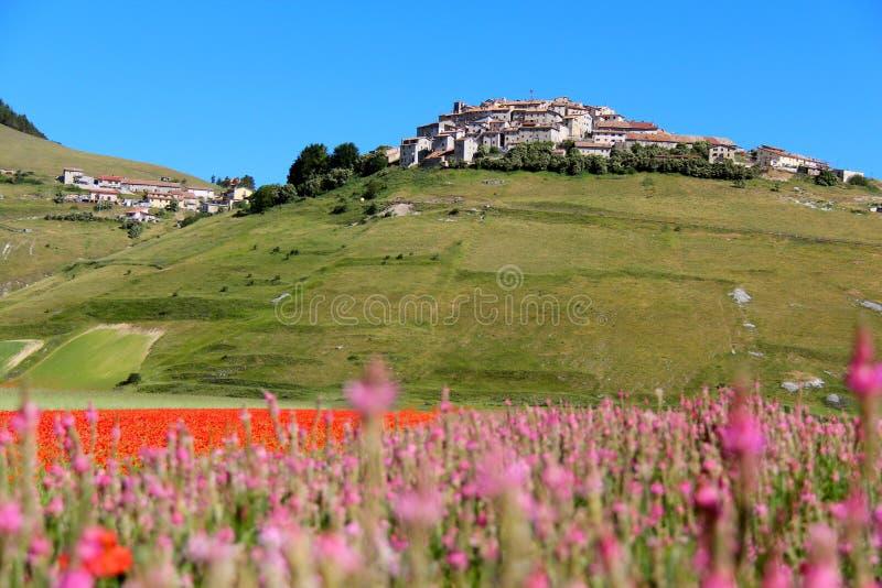 Χωριουδάκι Castelluccio στην Ιταλία στοκ εικόνες