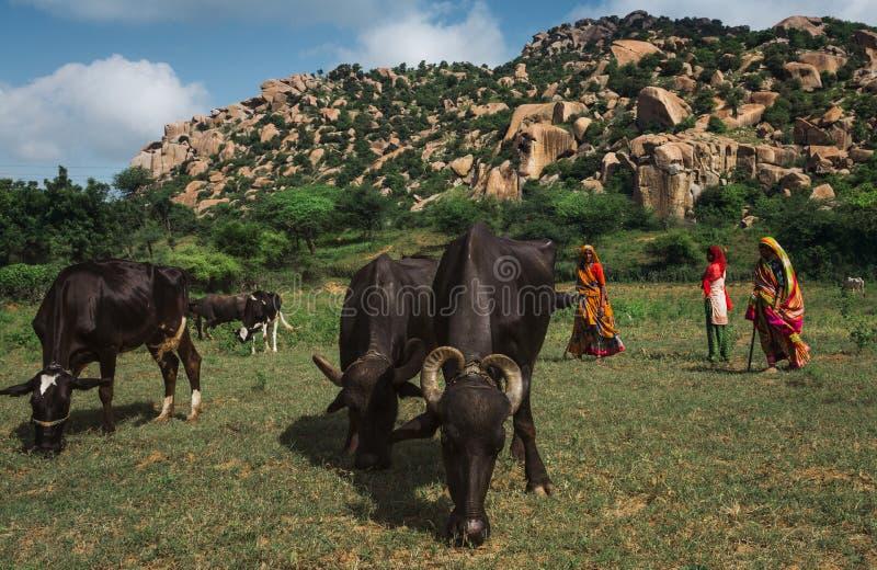 Χωριό Ινδία στοκ φωτογραφία