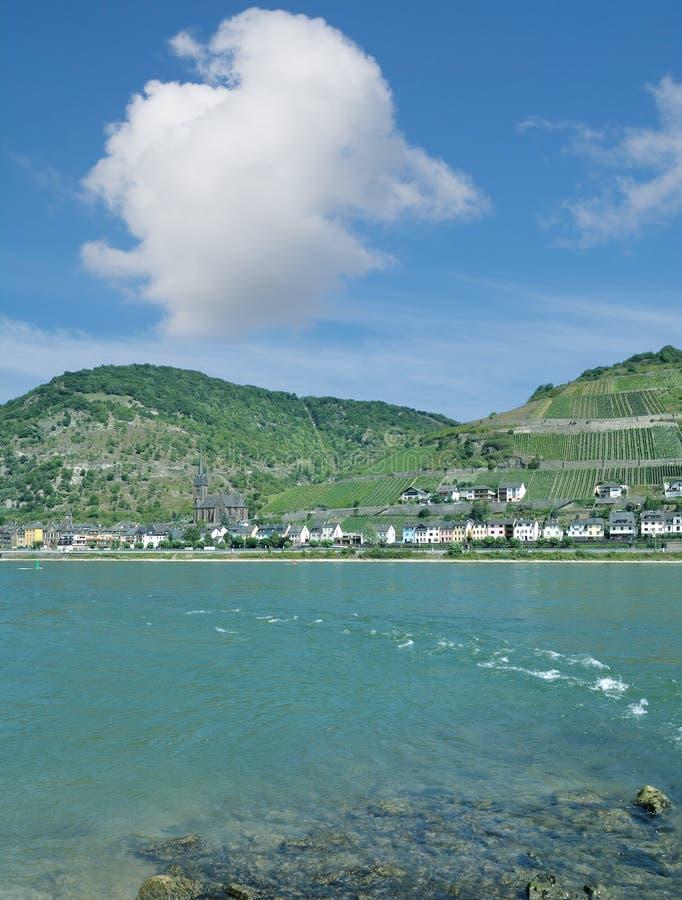 Χωριό κρασιού, Lorchhausen, ποταμός του Ρήνου, Rheingau, Γερμανία στοκ εικόνες με δικαίωμα ελεύθερης χρήσης