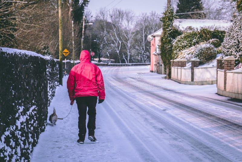 Χωριό που καλύπτονται στο χιόνι κατά τη διάρκεια της θύελλας Emma, επίσης γνωστή ως κτήνος από την ανατολή, και ένα άτομο που περ στοκ φωτογραφία με δικαίωμα ελεύθερης χρήσης